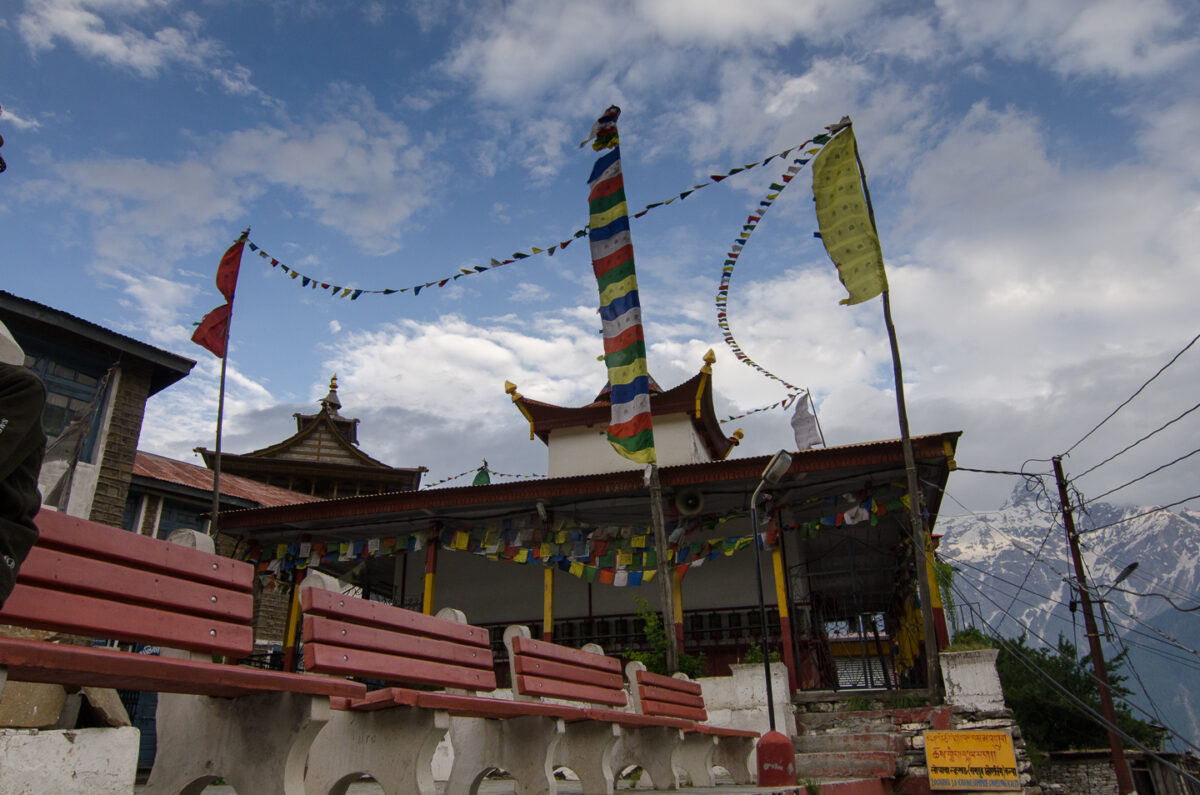 A Journey (in Pictures) to Kalpa in Kinnaur Valley